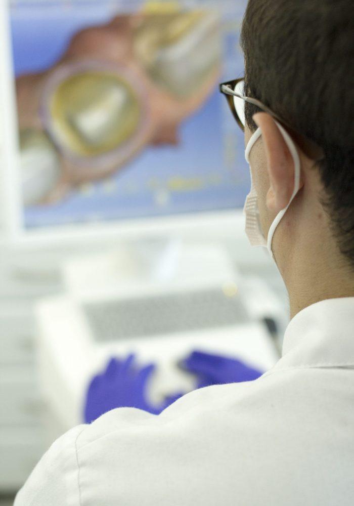 protesis y rehabilitacion dental